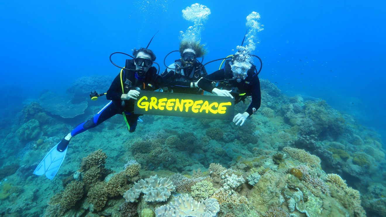 gary-farr-with-greenpeace-uw-iii